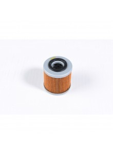 Twin Air Oil Filter 025046