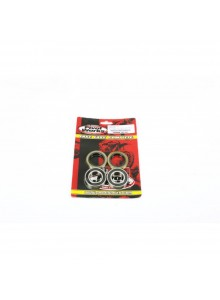 PIVOT WORKS Wheel Bearing Kit KTM