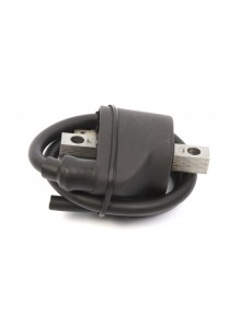 Kimpex Ignition Coil Polaris - 195059