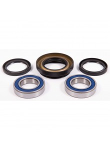 All Balls Wheel Bearing & Seal Kit Fits Honda