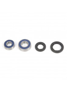 All Balls Wheel Bearing & Seal Kit Fits Arctic cat