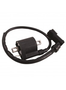 Outside Distributing External Ignition Coil 217121
