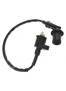 Outside Distributing External Ignition Coil 217122