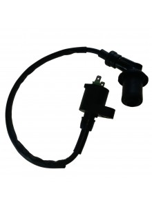 Outside Distributing External Ignition Coil Universal - 217485