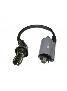 Outside Distributing External Ignition Coil 217488