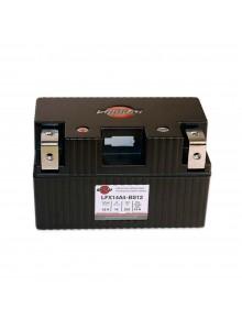 SHORAI LFX Battery LFX14A4-BS12