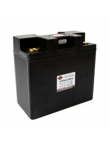 SHORAI LFX Battery LFX24L3-BS12
