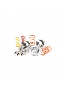 Pro-Series Clutch Kit