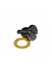 EMP Drain Screw and Washer
